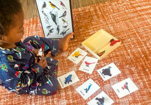 Adapting Classical Education for the Family Values: Montessori